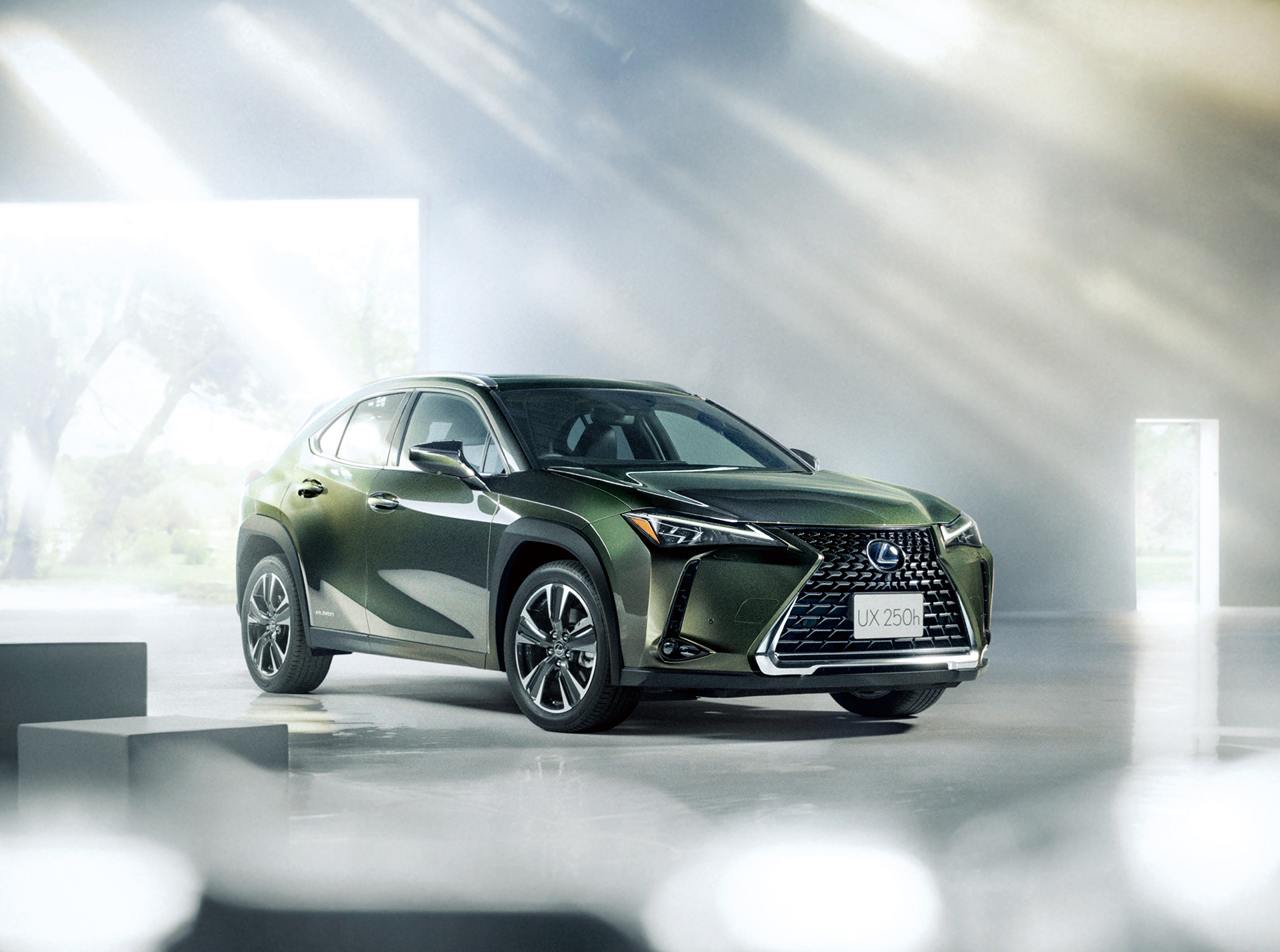 The All New 2019 Lexus UX Launched 6