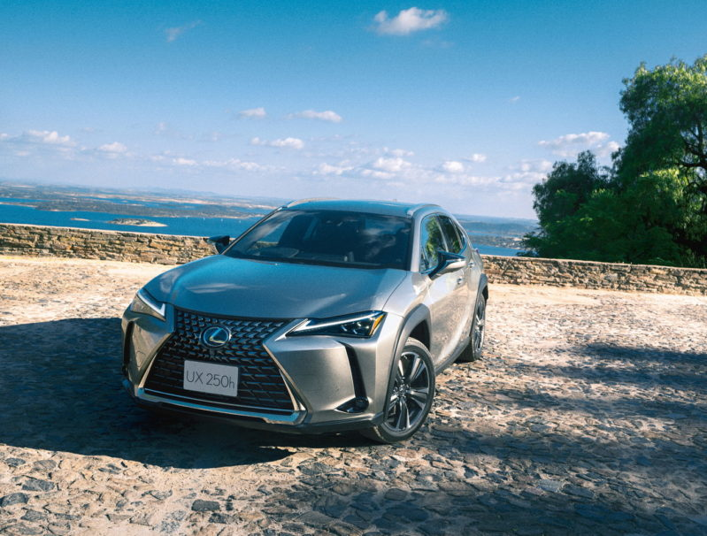 The All New 2019 Lexus UX Launched 1