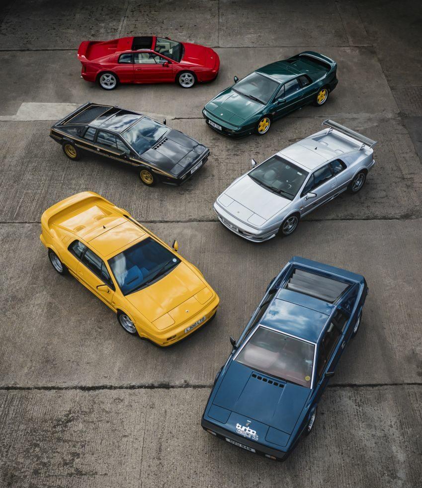 The Market Lotus Group 850x1062 1